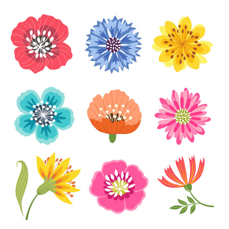 Set of bright colorful flowers isolated on white background. Illustration