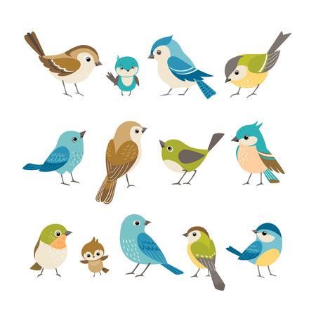 Conjunto de pequeños pájaros coloridos lindos aislados en el fondo blanco