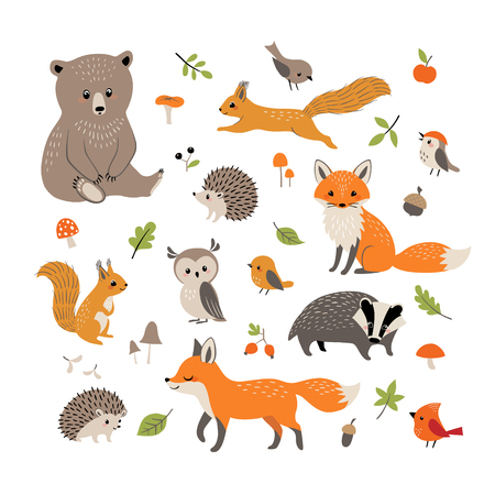 Set of cute forest animals, mushrooms, berries, leaves and acorns  isolated on white background. Illustration