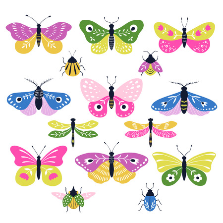 Set of multicolored decorative folk butterflies, moths, dragonflies and bugs isolated on white background.