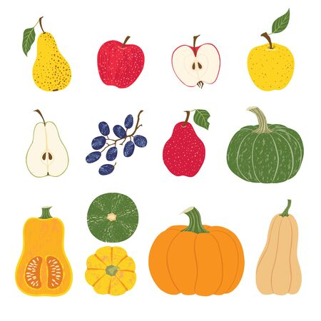 Set of autumn apples, pears, grapes and pumpkins isolated on white background.