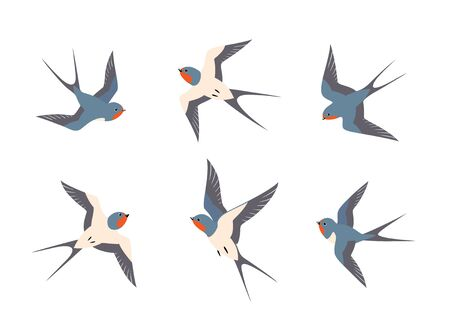 Set of flying barn swallows birds isolated on white background.