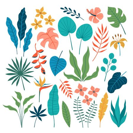 Collection of tropical leaves and flowers in flat style isolated on white background. Illustration