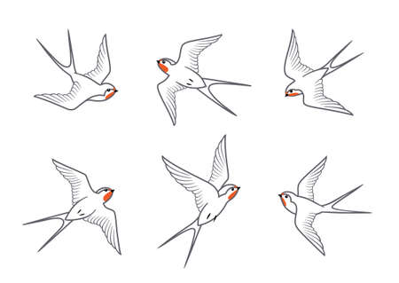 Set of flying barn swallows birds isolated on white background. Vector line drawing design elements.