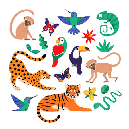 Set of tropical jungle animals, birds, butterflies, flowers and leaves isolated on white background. Illustration