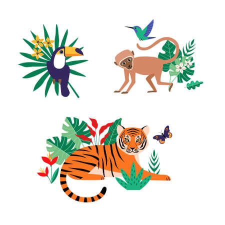 Tropical jungle birds and animals: toucan, tiger, monkey, hummingbird and butterfly with rainforest  leaves and flowers on white background