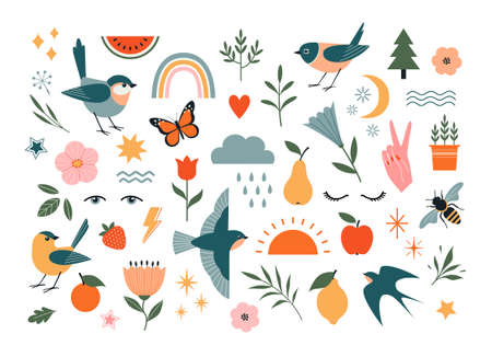Set of nature vector design elements isolated on white background. Birds, floral and flower elements, fruit, insects and weather elements. Illustration