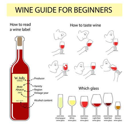 Vector infographic van het wijnproeven gids voor beginners. Typografie poster voor wijnwinkel of informatie poster voor wijnmakerij Stock Illustratie