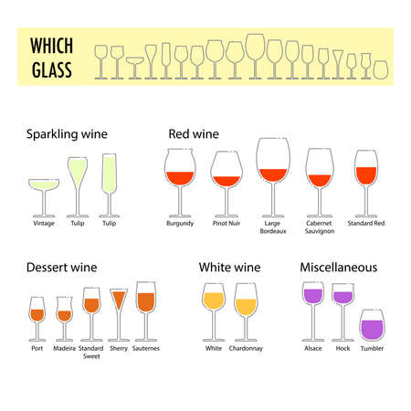 professional flute: Typography poster for wine tasting. Flat different glasses for wine. How to choose a glass for different wine. Information poster for wineries or wine shop Illustration