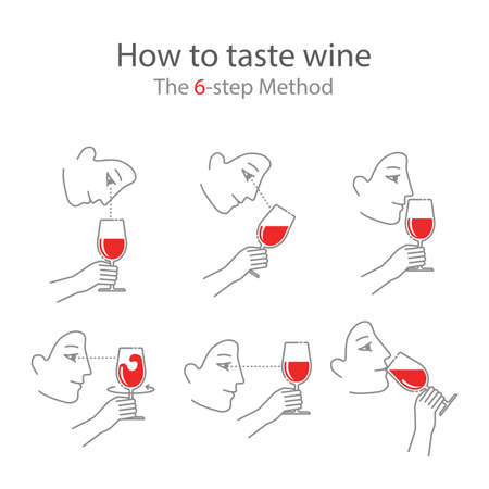 Wine tasting guide for beginners in a modern flat style. How to taste wine, the 6-step method. Stages of wine tasting. Typography poster for wine tasting, information poster for wineries or wine shop Illusztráció