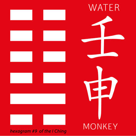 hexagram: Symbol of i ching hexagram from chinese hieroglyphs. Translation of 12 zodiac feng shui signs hieroglyphs- water and monkey. Illustration