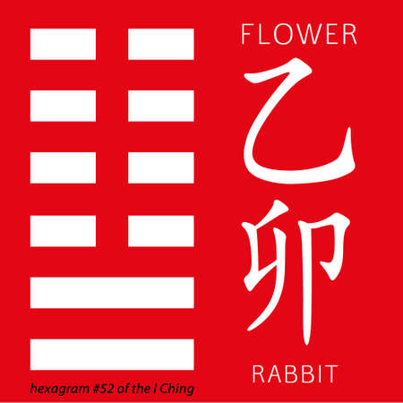 hexagram: Symbol of i ching hexagram from chinese hieroglyphs. Translation of 12 zodiac feng shui signs hieroglyphs- flower and rabbit. Illustration