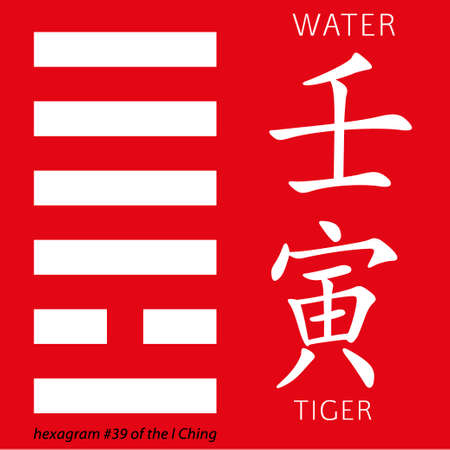 hieroglyphs: Symbol of i ching hexagram from chinese hieroglyphs. Translation of 12 zodiac feng shui signs hieroglyphs- water and tiger.