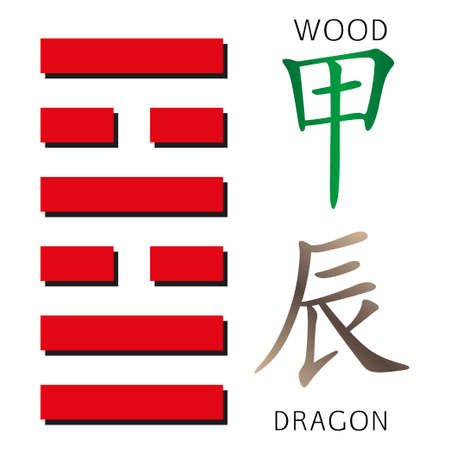hexagram: Symbol of i ching hexagram from chinese hieroglyphs. Translation of 12 zodiac feng shui signs hieroglyphs- wood and dragon.