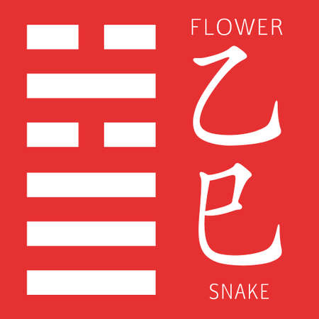 cosmology: Symbol of i ching hexagram from chinese hieroglyphs. Translation of 12 zodiac feng shui signs hieroglyphs- flower and snake.
