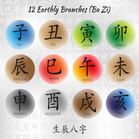 tigre cachorro: Conjunto de símbolos de jeroglíficos chinos. Traducción de 12 animales rama zodiaco, muestras del Feng Shui jeroglífico: rata, buey, tigre, conejo, dragón, serpiente, caballo, cabra, mono, gallo, perro, cerdo