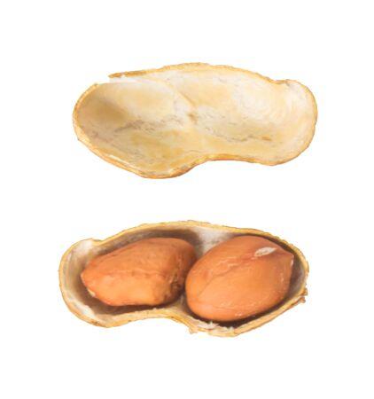 Draufsicht auf Erdnuss und Erdnussnussschale in isoliertem weißem Hintergrund mit Beschneidungspfad Standard-Bild
