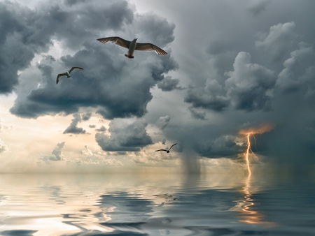 Seagulls over ocean, comes nearer a thunder-storm with rain and lightning on background photo