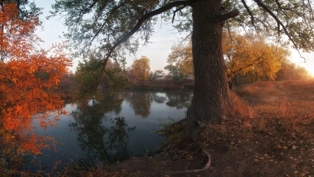 Beautiful autumn landscape on coast of the river, foggy morning with sun. Panorama photo