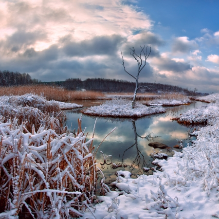 Winter landscape with snowy river and dry tree, majestic sky