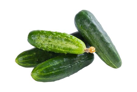 Green cucumbers vegetables isolated on white background  Studio photo Stock Photo - 14646950