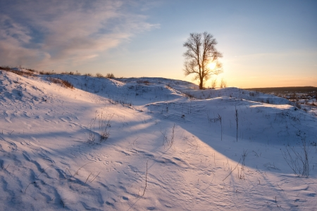 Beautiful winter landscape with lonely tree, clouds in the sky, sunset Stock Photo - 15308867