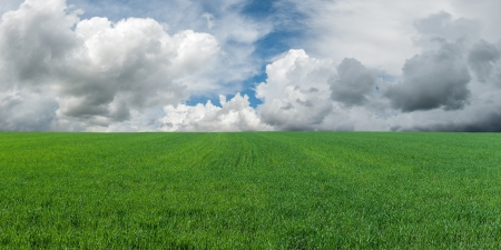 Landscape with big green field and majestic clouds in the sky on background Stock Photo - 15308869