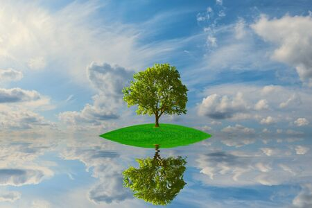 Small green island with lonely tree reflection in quiet water of the ocean Stock Photo - 15308861