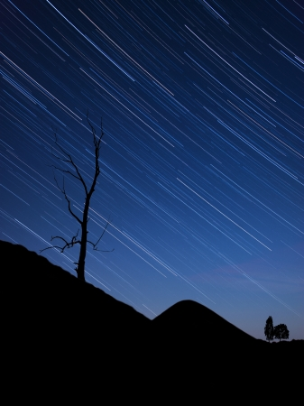 Night landscape with tree silhouette on a hill and sky background with startrails