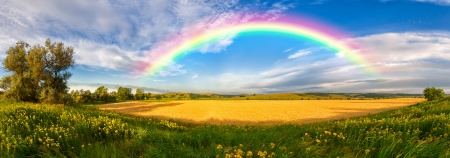pastoral scenery: Panorama of a big summer field shined with the sun, with clouds and rainbow in the sky on background
