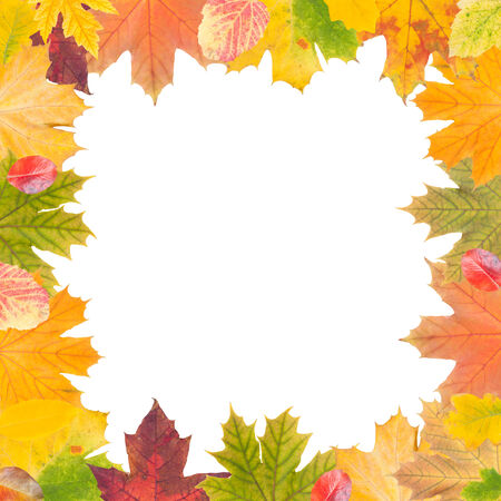 Autumn frame isolated on white, place for your text