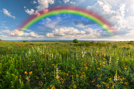 Rainbow over flower meadow, summer landscape photo