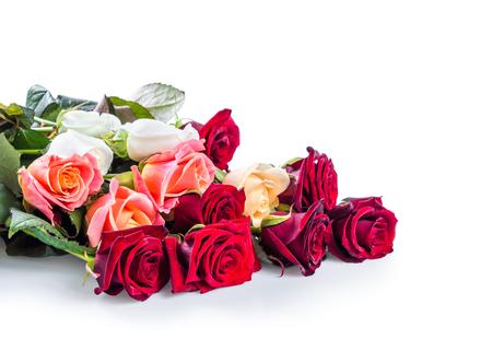 Roses flower isolated on white background Stock Photo - 25325583