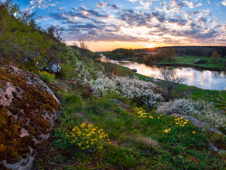 Beautiful spring sunset over river, landscape with flowers photo