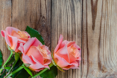 Roses flower on wooden rustic background Фото со стока