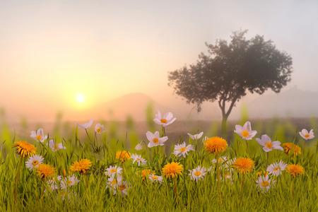 Beautuful floral background Standard-Bild