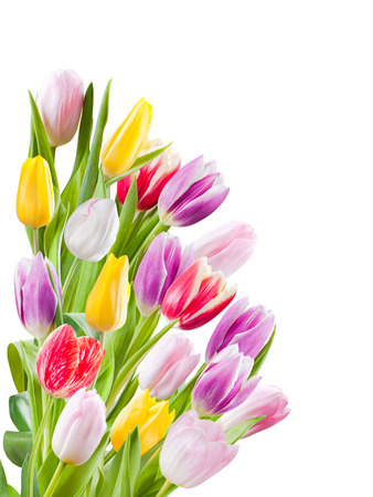 Beautiful bouquet of tulips flower isolated on a white background