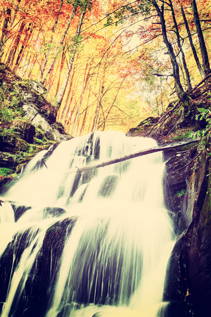 vintagel: Vintagel waterfall with white jets, surrounded by golden autumn forest