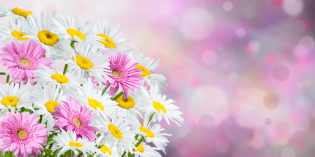 solemnity: Colorful spring background with fragrant flowers Stock Photo