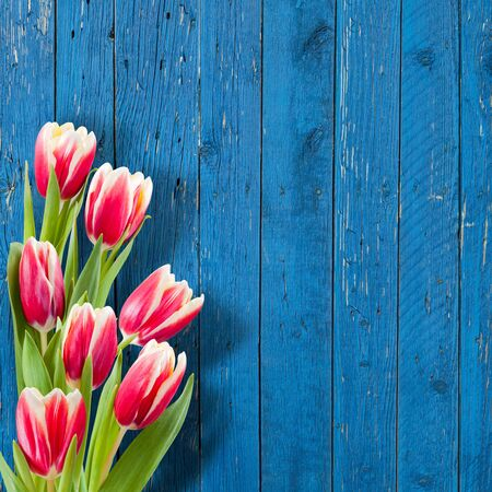 Beautiful flowers on wooden background, floral background, flower border
