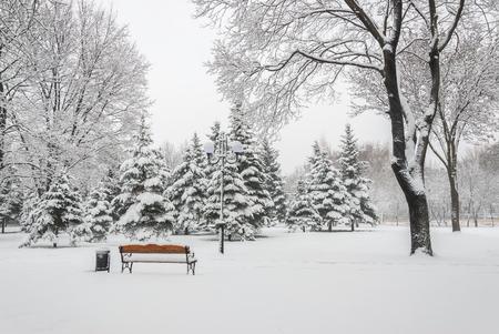 paisaje nevado con bancos en el parque de invierno de la ciudad, paisaje urbano