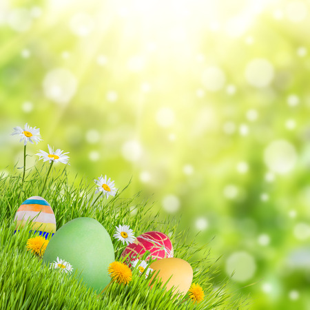 april flowers: Easter nature holiday background with eggs and flowers