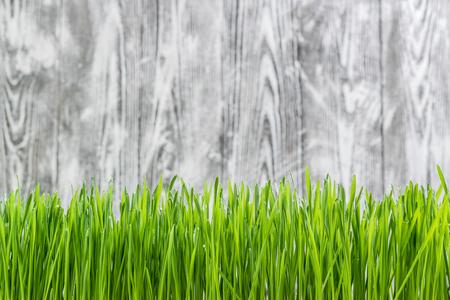 Fondo de la naturaleza con la hierba verde en el telón de fondo de madera