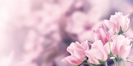 valentine border: Vintage postcard with rose flowers, floral border Stock Photo