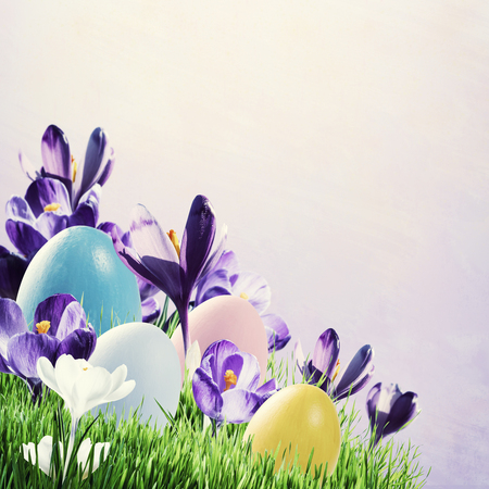 Painted eggs on easter holiday background, spring grass and crocus flowers, copy space. Vintage stylization, retro film filter