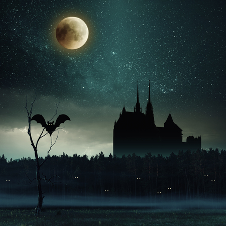 Mystic dark castle in forest, halloween background. Night landscape with stars and bloody moon. Vintage stylization, retro film filter