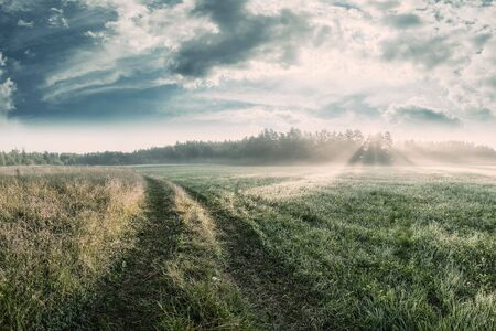 Beautiful morning landscape with road between meadows and sun rays, summer view. Vintage stylization, retro film filter