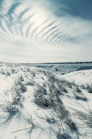 Winter landscape with steppe covered snow. Icy grass in snowy prairie. Vintage stylization, retro film filter Stock Photo