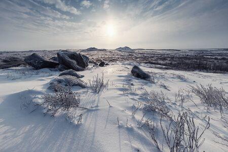 Winterlandschaft mit Steppe bedecktem Schnee. Eisiges Gras in der verschneiten Prärie. Retro-Stilisierung, Vintage-Filmfilter Standard-Bild