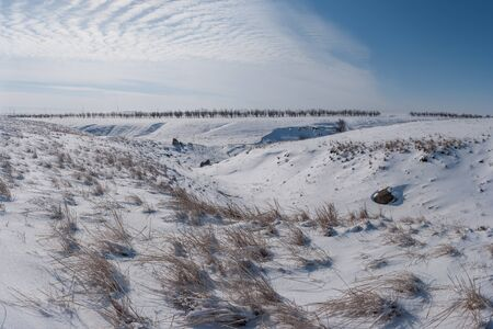 Winter landscape with steppe covered snow. Icy grass in snowy prairie